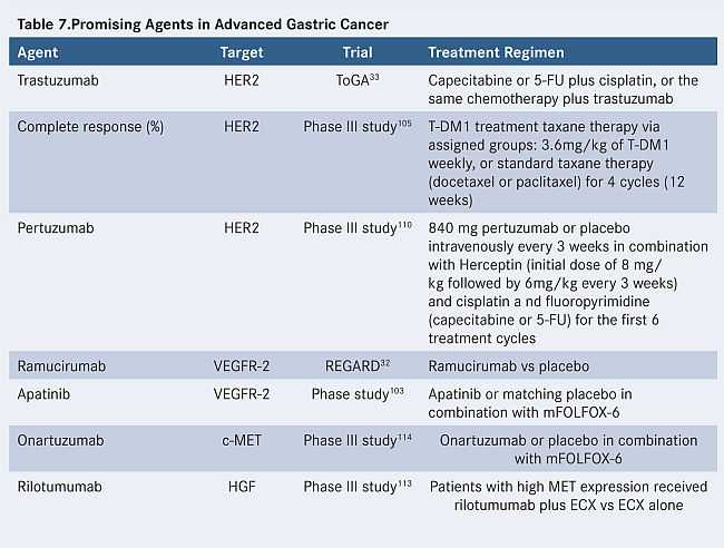 Her2 in gastric cancer